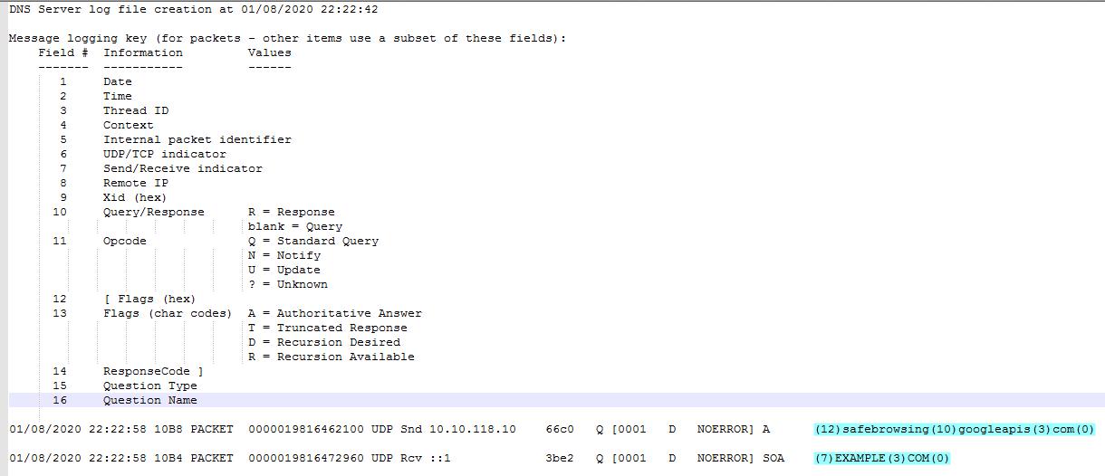 DNS_Debug_Log.png